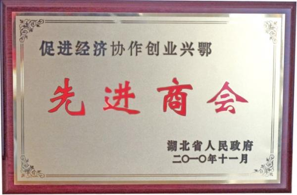 2012年被湖北省人民政府评为先进商会.jpg