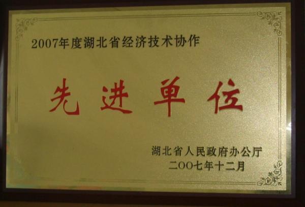 2007年被湖北省经协办评为湖北省先进单位.jpg