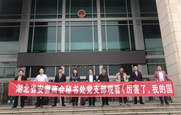 湖北省安徽商会秘书处党支部组织党员观看《厉害了,我的国》