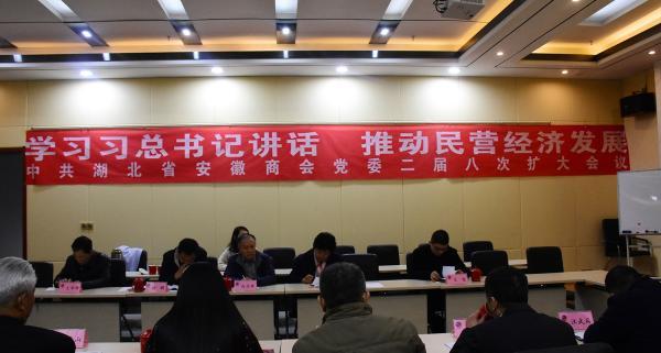 学习习总书记讲话 推动民营经济发展 中共湖北省安徽商会党委二届