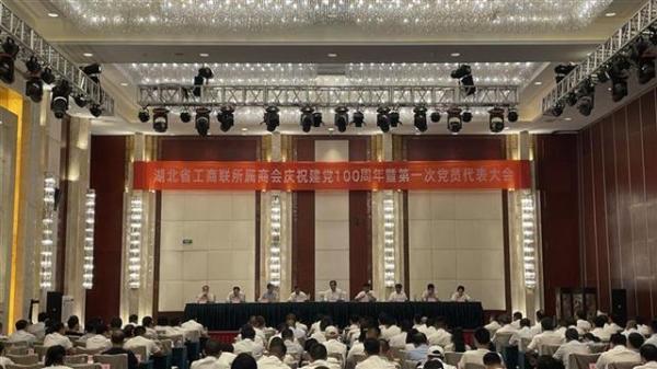 王志菁书记等出席湖北省工商联所属商会党委第一次党员代表大会